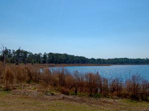 Buck Lake Group Use Area
