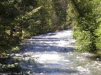 Wenatchee Floresta Nacional