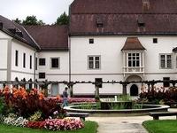 Burg Wels