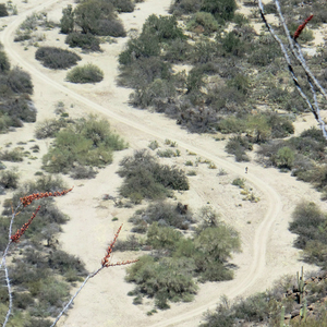 Burro Trail