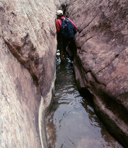 Burro Wash Hike - Capitol Reef - Utah - USA