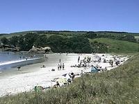 Fish Rock Beach
