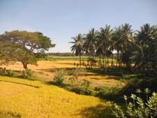 Byadarahalli Village
