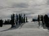 Ski Slopes At Dusk