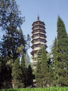The Pagoda Of Bailin Temple