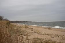 Beach In The Park