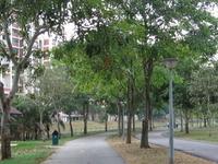 Bedok Town Park