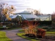 Andersons Greenhouse
