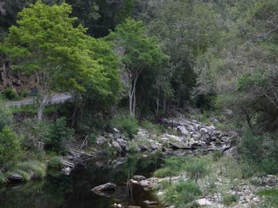 Bloukrans Pass And Bloukrans River