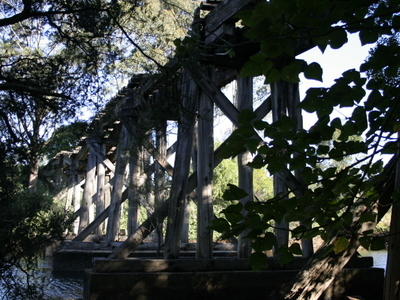 Derelict Bridge Over Bomaderry Creek