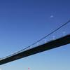 Another View Of The Bosphorus Bridge