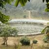 Pool For Victoria Amazonica
