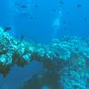 Bow Gun Of The Fujikawa Maru