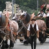 Beer Carriage At The Oktoberfest\'s Folk