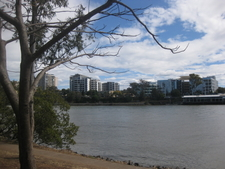 Brisbane River From West End