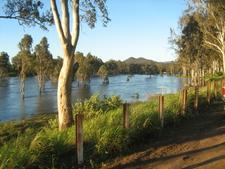 Brisbane River Downstream