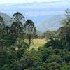 Bunya Mountains National Park