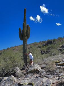 Cactus Along Peralta Trail