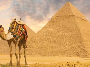 Egypt Travel Leads