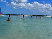 Caladesi Island Tour
