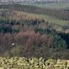 Caldbeck  Fells    West Of  Penrith