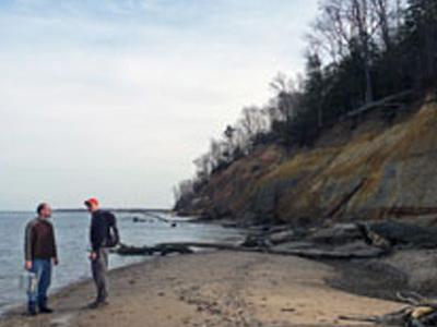 Calvert Cliffs