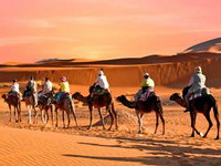 Camel Ride and Quad Bike in Marrakech Palmeraie