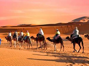 Camel Ride and Quad Bike in Marrakech Palmeraie Fotos
