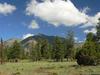 Campbell Mesa Trail