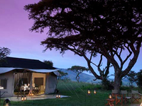 5 Days Serengeti Camping Safari