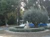 Campus De Mundet, Universitat De Barcelona