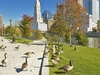 Canadian Geese Along Scioto River In Columbus OH