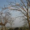 Canary Hill Top - Hazaribagh