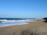 Canaveral National Seashore
