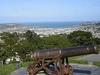Cannon @ Mount Victoria - Wellington NZ