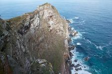Cape Of Good Hope SA - Ostrich Farm