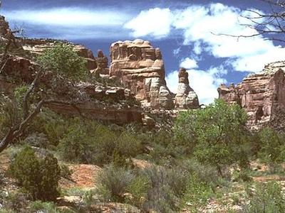 Capitol Reef Cedar Mesa - Utah - USA