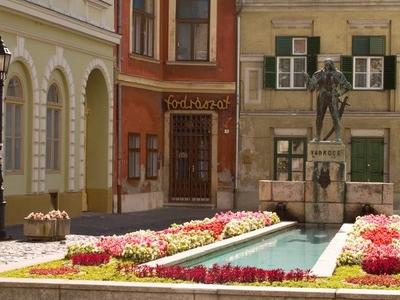 Captain Varkocs György Statue, Győr
