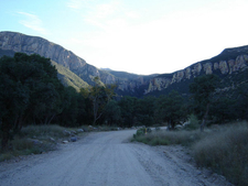 Carr Canyon In The Huachuca Mountains