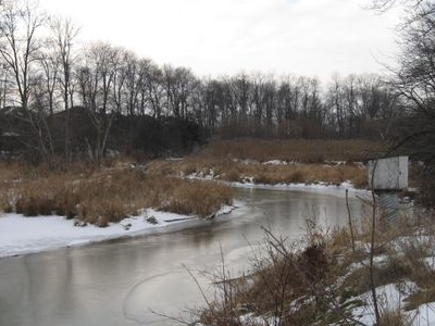Carruthers  Creek