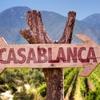 Casablanca Bike & Wine Half Day Tour