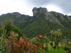 Castle Rock From Kirstenbosch