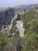 Catalina Highway Climbing Mount Lemmon