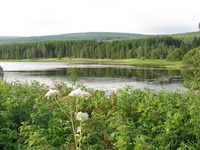Catcleugh Reservoir