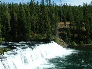 Yellowstone Aventura - Gêiseres e Grizzlies 10 Dias