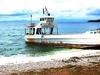 Cebu Island - Visayas