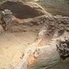 Celadon Kiln Site Centro de Estudios y Conservación