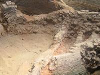 Celadon Kiln Site Study and Conservation Centre