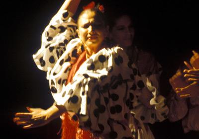 Centro Andaluz De Flamenco Junta De Andalucía