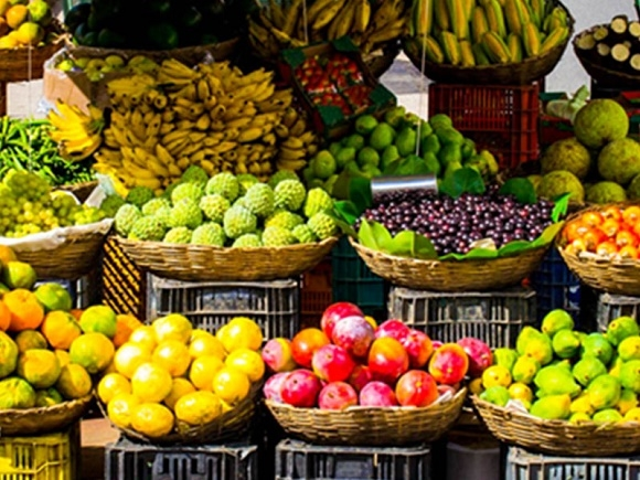 Colombo Fruit Tasting Tour With Market Visit Photos